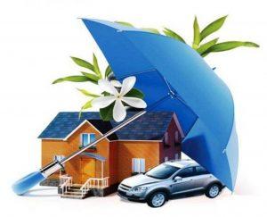 Read more about the article Обязательные виды страхования